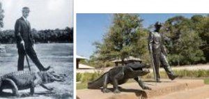 Statue of the Hilton Head Island developer Charles Fraser to an alligator